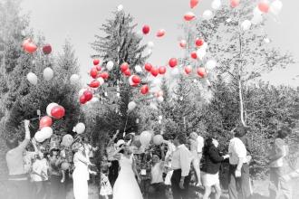 Beispiel Galerie Hochzeit